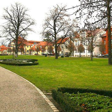 Umfrage: Parks & Grünflächen für Bürgerinnen und Bürger